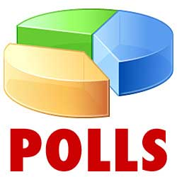 online-polls-and-privacy